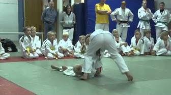 tikkurilan_judokat-H.264.mov