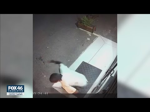 'Danger to the public.' Man accused of killing woman in NoDa connected to reported assault and break