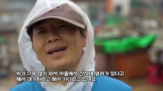 태풍 '미탁' 피해지역 자원봉사 현장