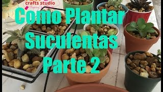 Como Plantar Suculentas Parte 2 – How To Plant Succulents Part 2
