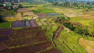 Download Mp3 Relaxing Music Kecapi Suling Sunda for Strees Relief Sleep Meditation