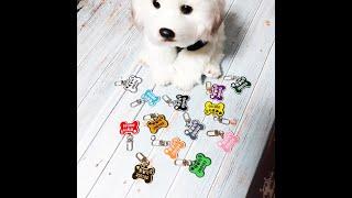 강아지 이름표 반려견 인식표 목걸이 연락처 대형견 고양…