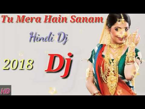 Tu Mera Hain Sanam Hindi Dj Song