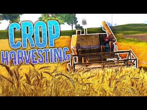 Our First Crop Harvest - Stuck in a Silo! - Farmers Dynasty Gameplay