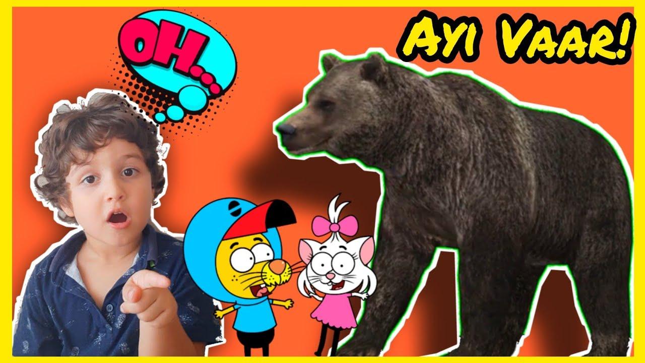 Download Doruk !!! Evde Ayı Var !  افضل سلسلة قصص تعليمية اخلاقية للاطفال , Eğlenceli Çoçuk Videosu