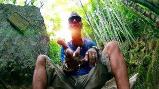 vuclip Mc Andrezinho Shock - Vida Blindada ( Video Clipe Oficial - HD ) PdrãO
