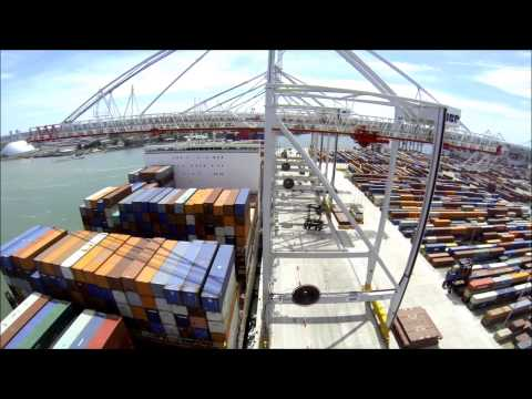 Liebherr - Container Cranes at DP World Southampton