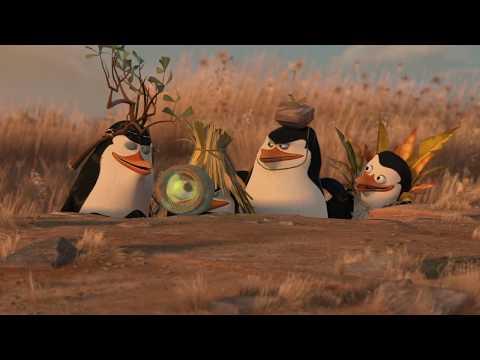 madagascar penguin clever trick || Penguin_rocks