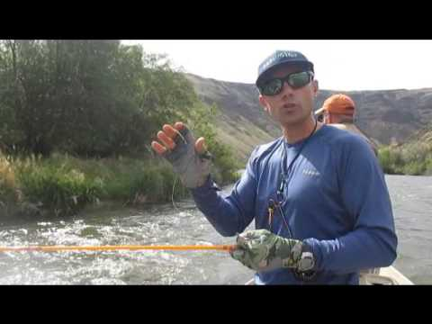 Caddis Dry Fly Fishing Action and Technical Casting Tips with a Redington Butterstick