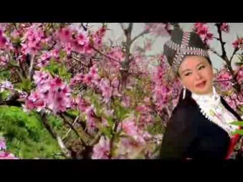 Nkauj Hmoob Tojsiab (720 HD)