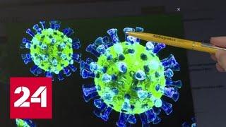 Уже в России! Когда появится вакцина против коронавируса? - Россия 24