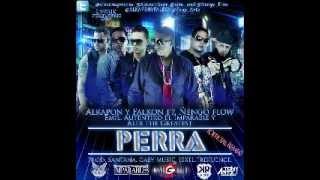 Alkapon & Falkon Ft. Ñengo Flow, Emil, Autentiko Y Alex The Greatest - Perra (Official Remix) YouTube Videos