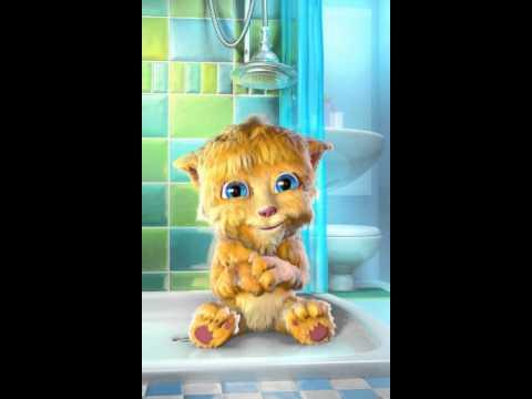 Talking Ginger Katzen Klo