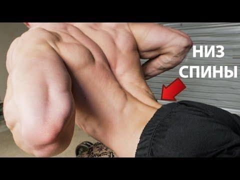 Как укрепить мышцы поясничного отдела