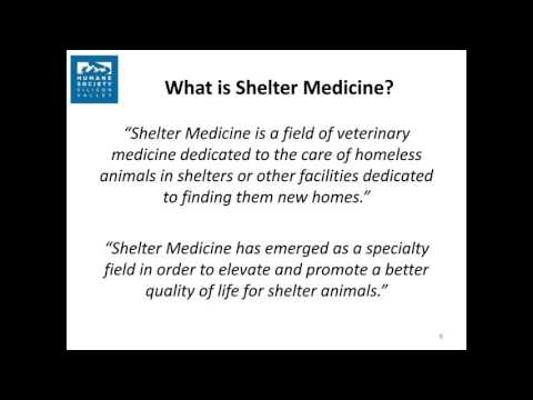Getting the Most Out of Shelter Medicine webcast Dec 2015