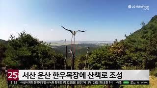 충남방송뉴스 - 서산 …