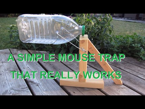 Thumbnail: Simple mouse trap that works. (REALLY)