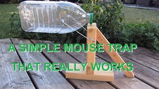 Simple mouse trap that works. (REALLY)