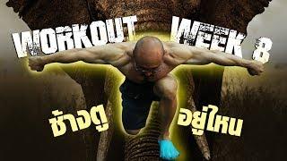 เล่นกล้ามไหล่ไปตามหาช้าง อยากดูก็กดดู กดไลค์ให้กูด้วย l hit your fat off: EP8
