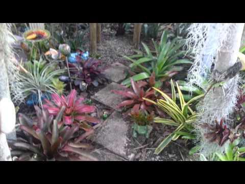Marisole's Garden