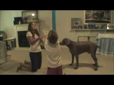 AuPairCare au pair video - The Tierney Family