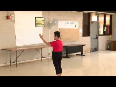 Review Tai Chi Movements + Cloud Hands everydaytaichi lucy chun Honolulu, Hawaii