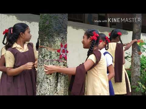 Karmveer BHAURAV patil Highschool Mokhada