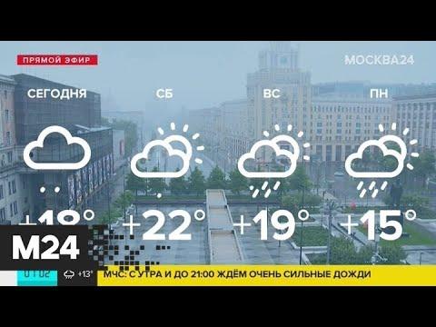 В Москве объявили штормовое предупреждение - Москва 24