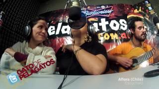 Aflora (Chile) - Reggae en PelaGatos - Escuchaló YouTube Videos