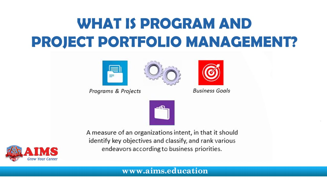 What is Program Management and Project Portfolio ...