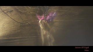 Pulsar - Arrows Of Cupid