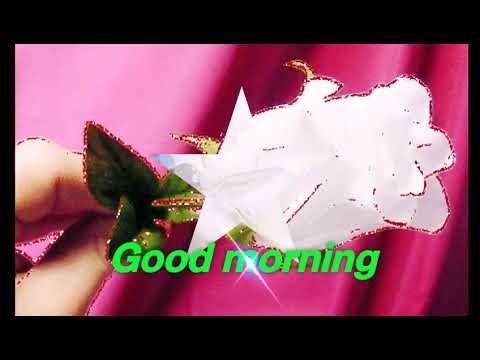 Good morning status  by Pagalworld no 1 Pagalworldno1