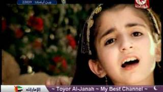 TOYOR AL JANNAH - كنت قاعدة
