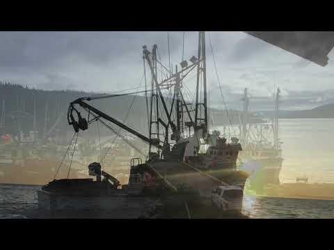 2019 Newfoundland Mackerel Fishery