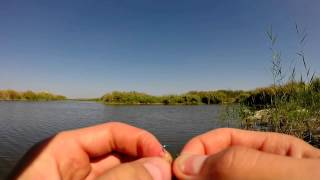 Русская рыбалка 3 (3.99) Гигантский карп на рыбхозе