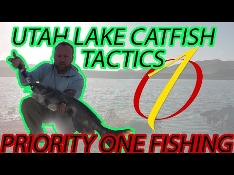 Utah Lake Catfish Tactics