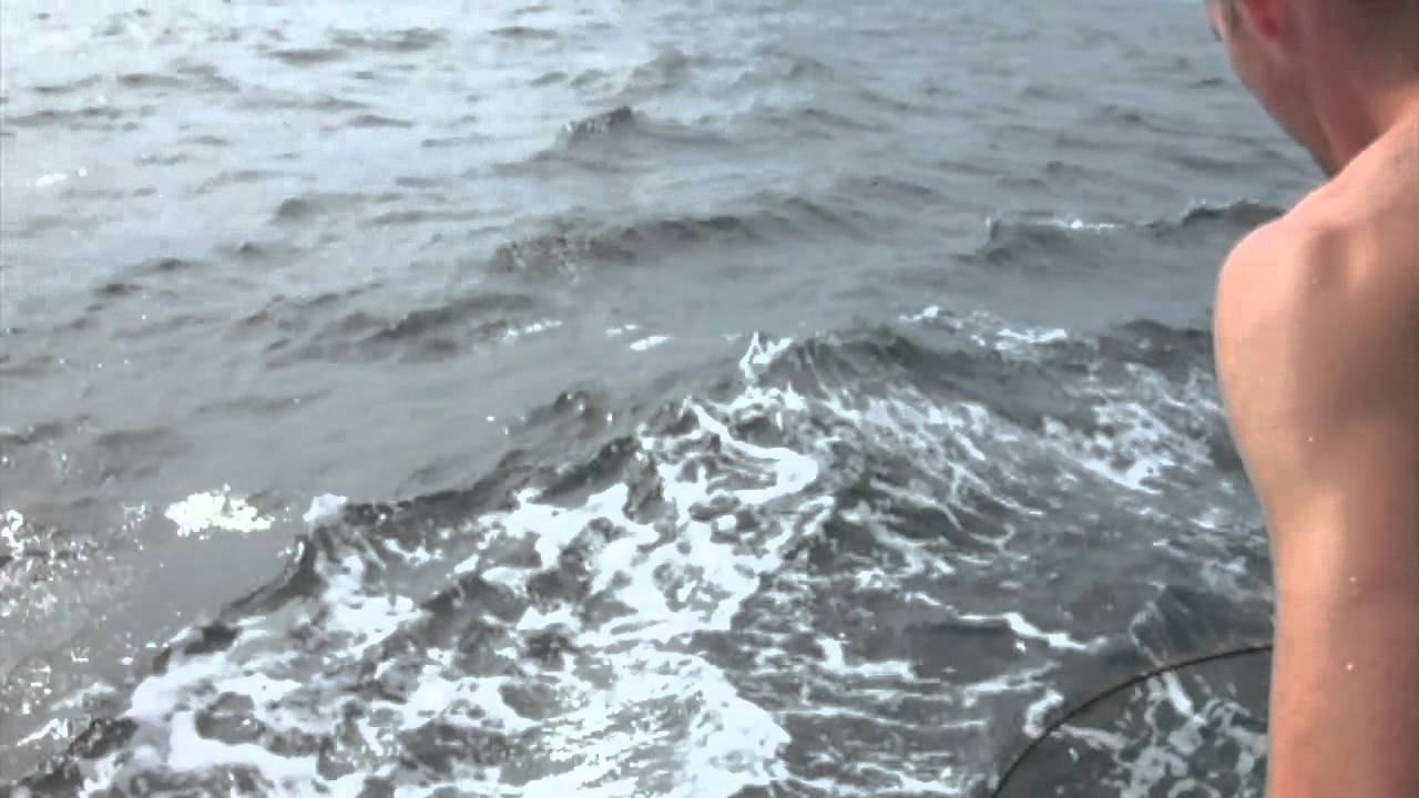 Nj thresher shark fishing youtube for Shark fishing nj