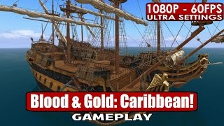 Blood and Gold Caribbean gameplay PC HD [1080p/60fps]
