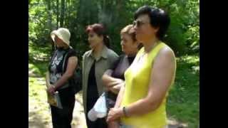 Семинар учителей начальных классов в лесу - математика