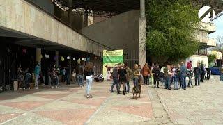 Астраханцы нашли друзей на выставке бездомных животных в парке «Аркадия»