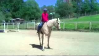 Training your horse Side passing and leg Yields with Mike Hughes, Auburn California