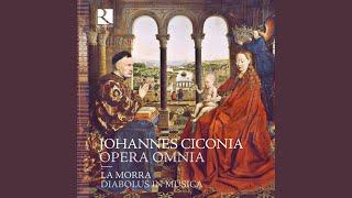 Motets et mouvements de messe: VIII. Gloria suscipe trinitas