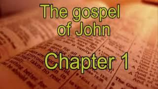 کتاب مقدس صوتی يوحنا - Gospel of John -04- Farsi Persian Audio Bible screenshot 5