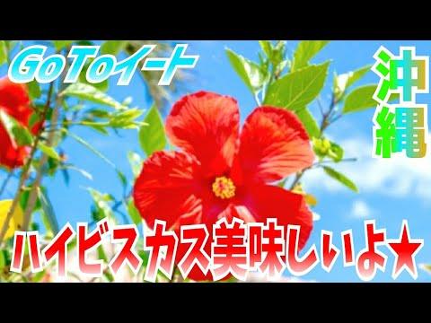 【GoToイート】沖縄~ハイビスカス美味しいよ★~