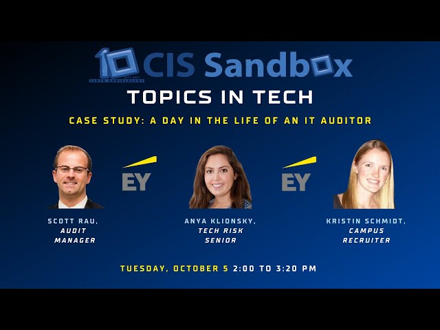 Case Study: A Day in the Life of an IT Auditor - Topics in Tech