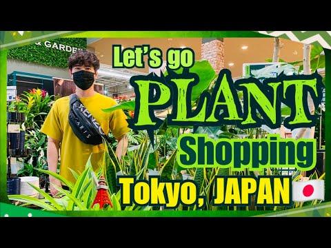 PLANT SHOPPING in TOKYO, JAPAN🇯🇵 | Let's shop for some INDOOR PLANTS! | Plus PLANT HAUL | VLOG 019
