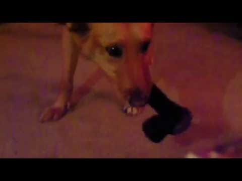 A girl get doggystyle-VLguRXU_M_4Kaynak: YouTube · Süre: 40 saniye