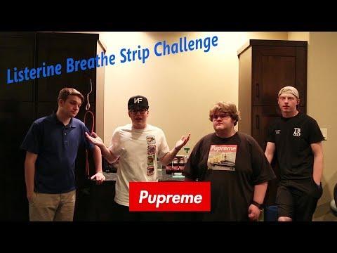 Pupreme Squad Minty Challenge