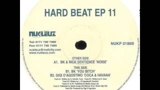 BK And Nick Sentience - Noise