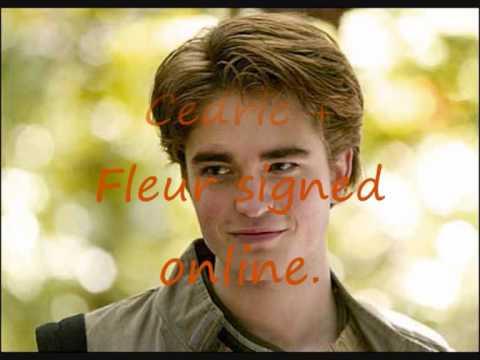 Harry Potter Chat Part 2 (english).wmv
